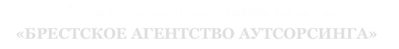 Брестское Агенство Аутсорсинга